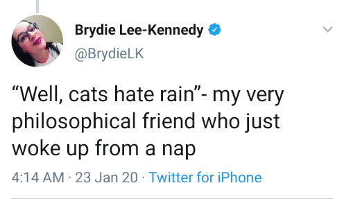 "Text - Brydie Lee-Kennedy O @BrydieLK ""Well, cats hate rain""- my very philosophical friend who just woke up from a nap 4:14 AM · 23 Jan 20 · Twitter for iPhone"