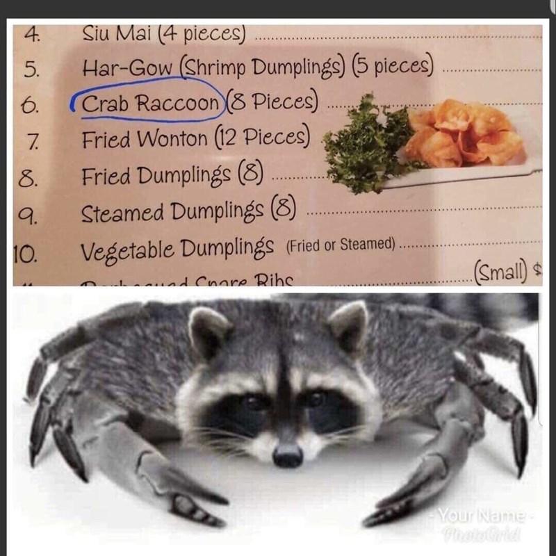 Procyonidae - Siu Mai (4 pieces) 4. Har-Gow (Shrimp Dumplings) (5 pieces) Crab Raccoon (8 Pieces) Fried Wonton (12 Pieces) Fried Dumplings (8) Steamed Dumplings (8) 5. 6. ...AI..... ......i. 7. 8. 9. Vegetable Dumplings (Fried or Steamed). 10. (Small) $ nd Cnore Rihe Your Name- PhatoGrid