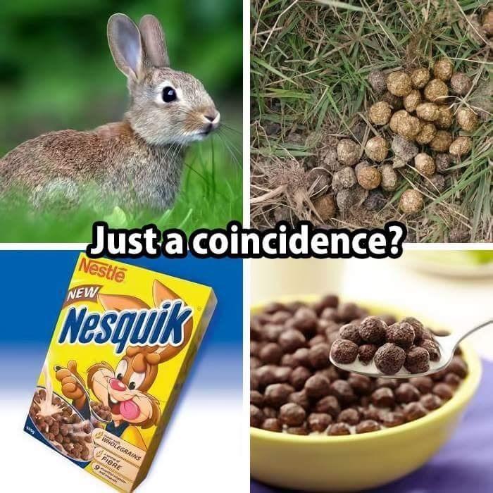 Pet food - Just a coincidence? Nestle NEW Nesquik uoLEGRAINS