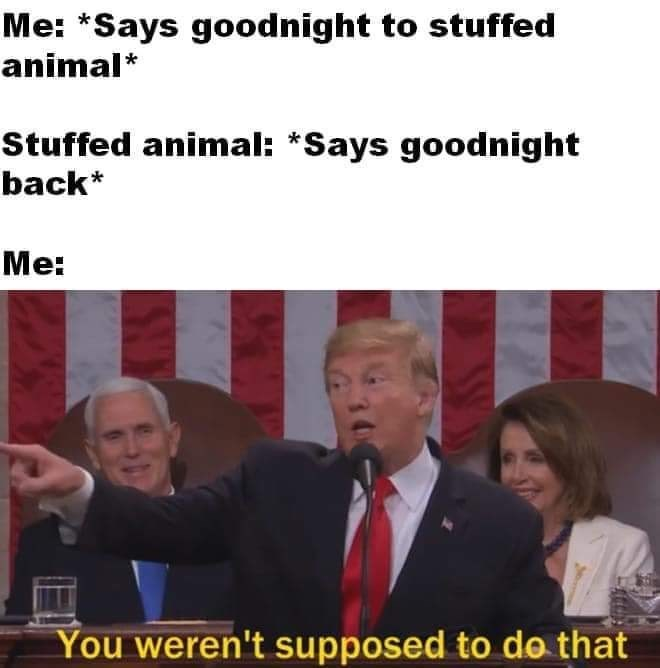 Photo caption - Me: *Says goodnight to stuffed animal* Stuffed animal: *Says goodnight back* Me: You weren't supposed to do that