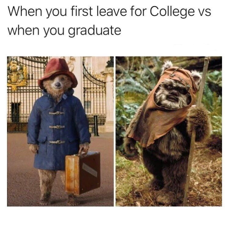 Adaptation - When you first leave for College vs when you graduate