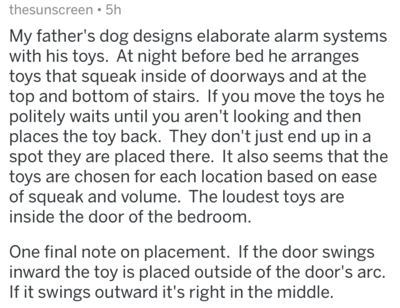 Text - Text - thesunscreen • 5h My father's dog designs elaborate alarm systems with his toys. At night before bed he arranges toys that squeak inside of doorways and at the top and bottom of stairs. If you move the toys he politely waits until you aren't looking and then places the toy back. They don't just end up in a spot they are placed there. It also seems that the toys are chosen for each location based on ease of squeak and volume. The loudest toys are inside the door of the bedroom. One