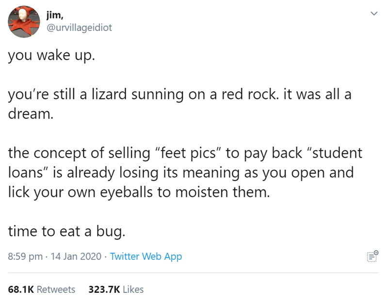 "Text - jim, @urvillageidiot you wake up. you're still a lizard sunning on a red rock. it was all a dream. the concept of selling ""feet pics"" to pay back ""student loans"" is already losing its meaning as you open and lick your own eyeballs to moisten them. time to eat a bug. 8:59 pm · 14 Jan 2020 · Twitter Web App 68.1K Retweets 323.7K Likes"