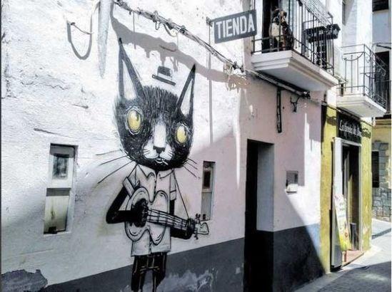 Cat - TIENDA