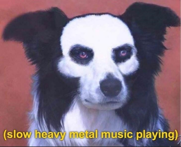 Mammal - (slow heavy metal music playing)