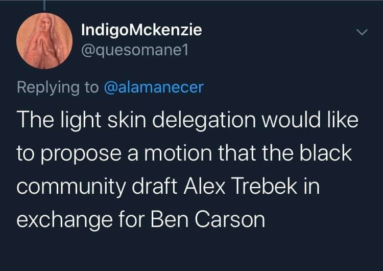 Text - IndigoMckenzie @quesomane1 Replying to @alamanecer The light skin delegation would like to propose a motion that the black community draft Alex Trebek in exchange for Ben Carson