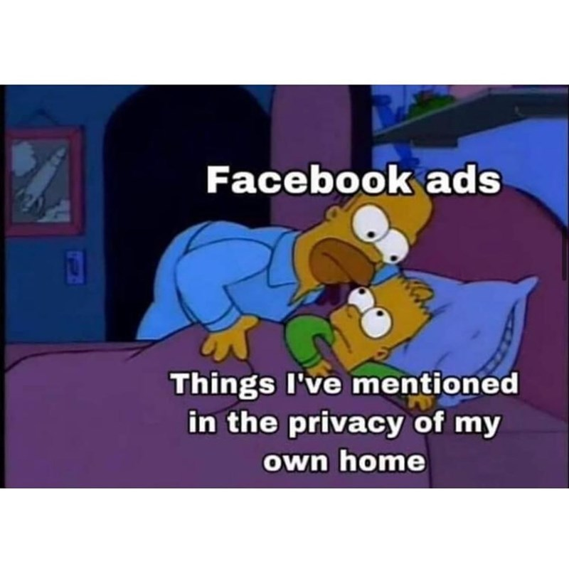 Cartoon - Facebook ads Things I've mentioned in the privacy of my own home