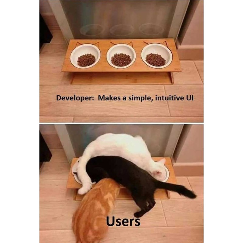 Cat - Developer: Makes a simple, intuitive UI Users
