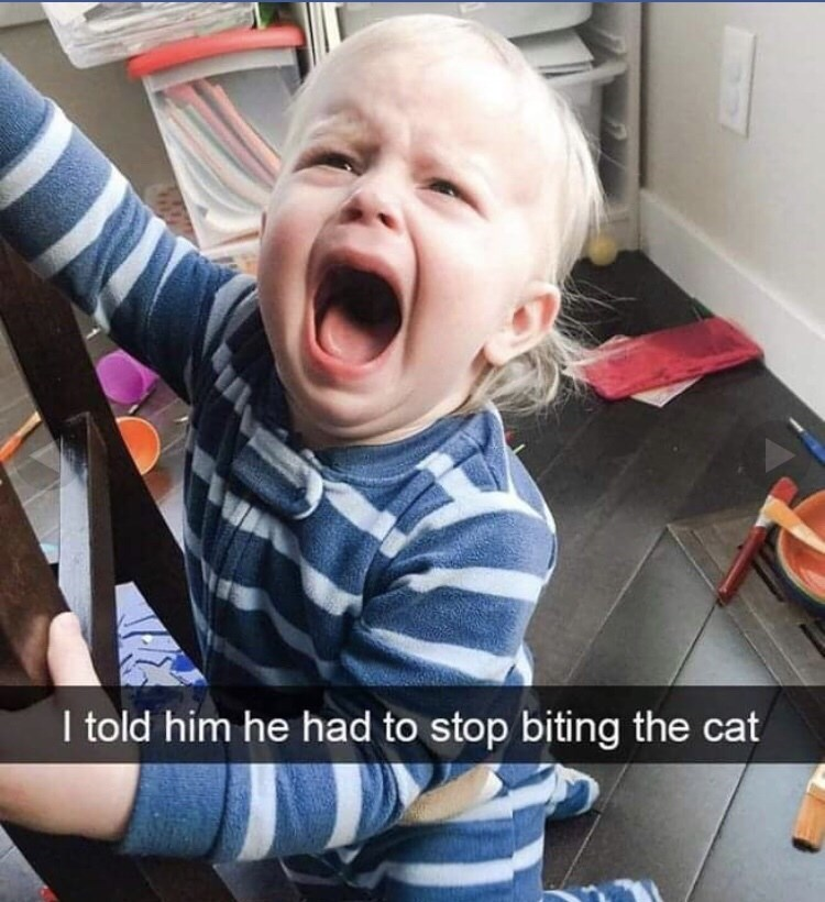 Child - I told him he had to stop biting the cat