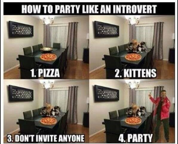 HOW TO PARTY LIKE AN INTROVERT 1. pizza 2. kittens 3. don't invite anyone 4. party four panels showing a dinner table with cats and pizza and a man dancing nearby