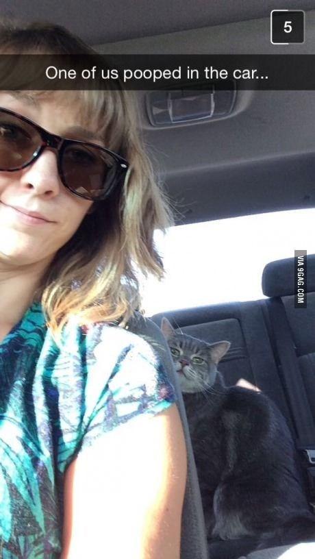 Eyewear - One of us pooped in the car... VIA 9GAG.COM LO