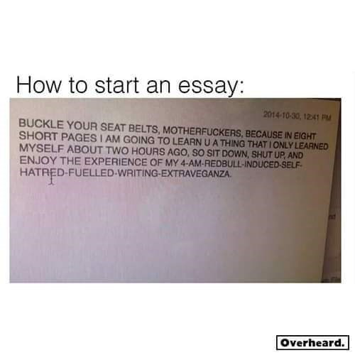 Text - How to start an essay: 2014-10-30, 1241 PM BUCKLE YOUR SEAT BELTS, MOTHERFUCKERS, BECAUSE IN EIGHT SHORT PAGES I AM GOING TO LEARN U A THING THAT I ONLY LEARNED MYSELF ABOUT TWO HOURS AGO, SO SIT DOWN, SHUT UP, AND ENJOY THE EXPERIENCE OF MY 4-AM-REDBULL-INDUCED-SELF- HATRED-FUELLED-WRITING-EXTRAVEGANZA. Overheard.