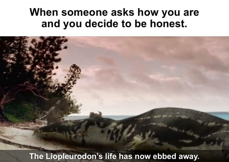 Adaptation - When someone asks how you are and you decide to be honest. The Liopleurodon's life has now ebbed away.