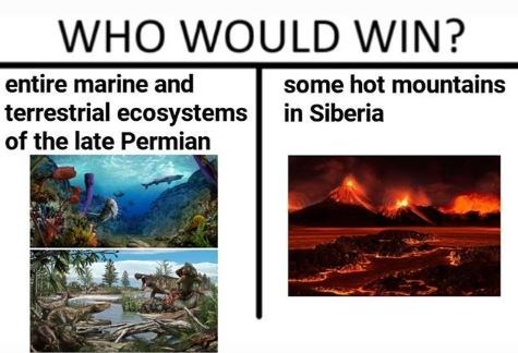 Adaptation - WHO WOULD WIN? entire marine and some hot mountains terrestrial ecosystems of the late Permian in Siberia