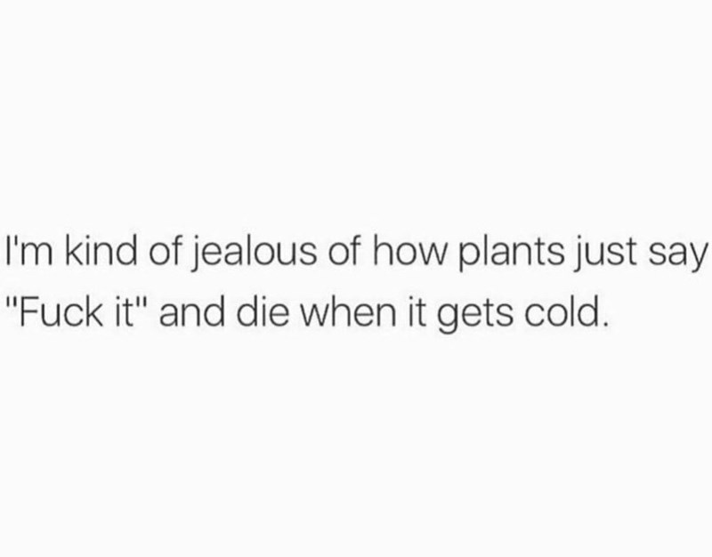 """Text - I'm kind of jealous of how plants just say """"Fuck it"""" and die when it gets cold."""