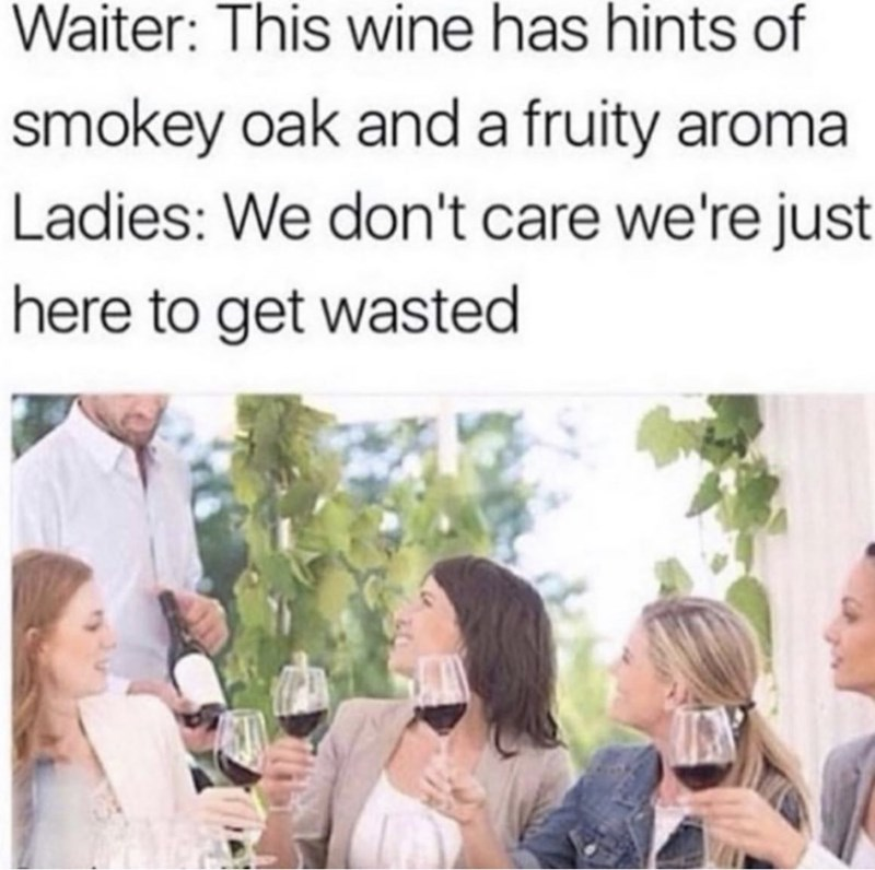 Text - Waiter: This wine has hints of smokey oak and a fruity aroma Ladies: We don't care we're just here to get wasted