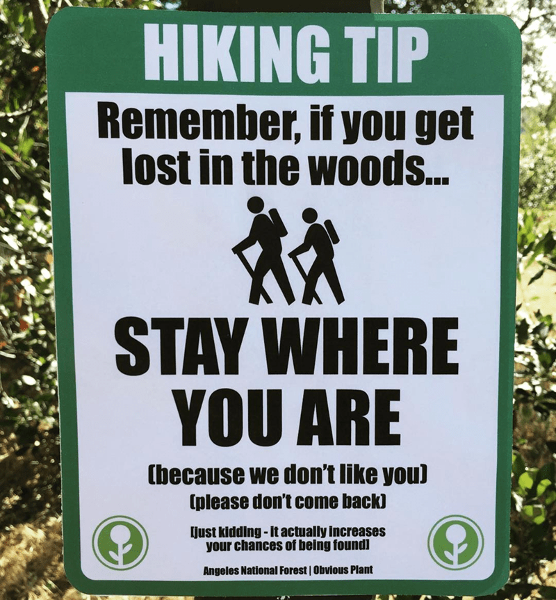 Text - HIKING TIP Remember, if you get lost in the woods. STAY WHERE YOU ARE (because we don't like you) (please don't come back) [just kidding - it actually increases your chances of being found) Angeles National Forest | Obvious Plant