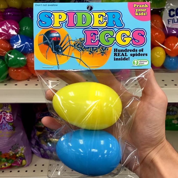 Ball - Don't not swallow Prank CE your kids! SPIDER EGGS FIL Hundreds of REAL spiders inside! obvious plant