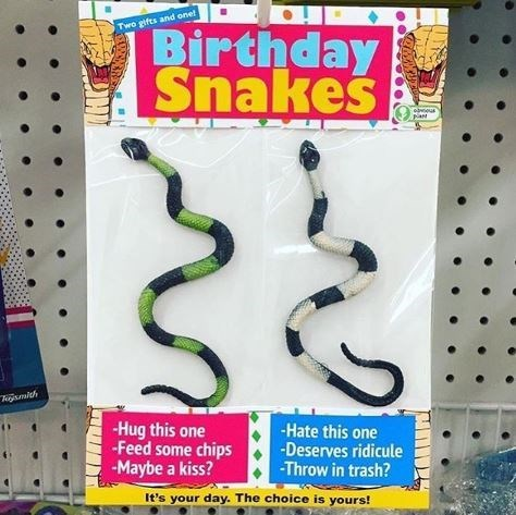 Font - Two gifts and onet Birthday Snakes plant kojsmith -Hug this one -Feed some chips -Maybe a kiss? -Hate this one -Deserves ridicule -Throw in trash? It's your day. The choice is yours!