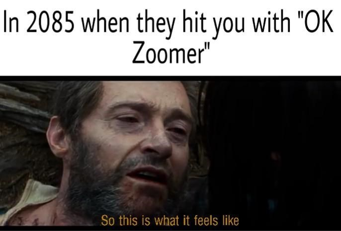 "Face - In 2085 when they hit you with ""OK Zoomer"" So this is what it feels like"