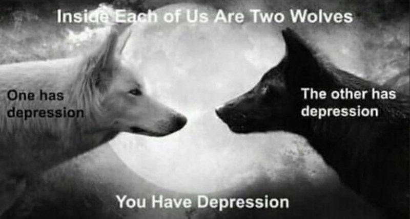 Canidae - Inside Each of Us Are Two Wolves The other has depression One has depression You Have Depression