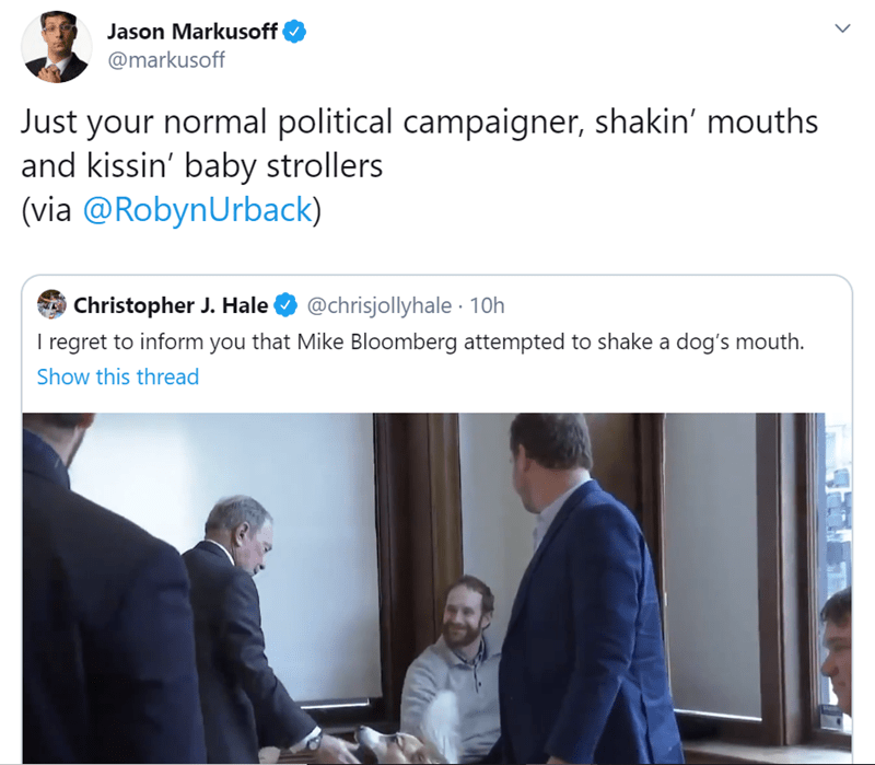 Text - Jason Markusoff @markusoff Just your normal political campaigner, shakin' mouths and kissin' baby strollers (via @RobynUrback) @chrisjollyhale · 10h I regret to inform you that Mike Bloomberg attempted to shake a dog's mouth. Christopher J. Hale Show this thread