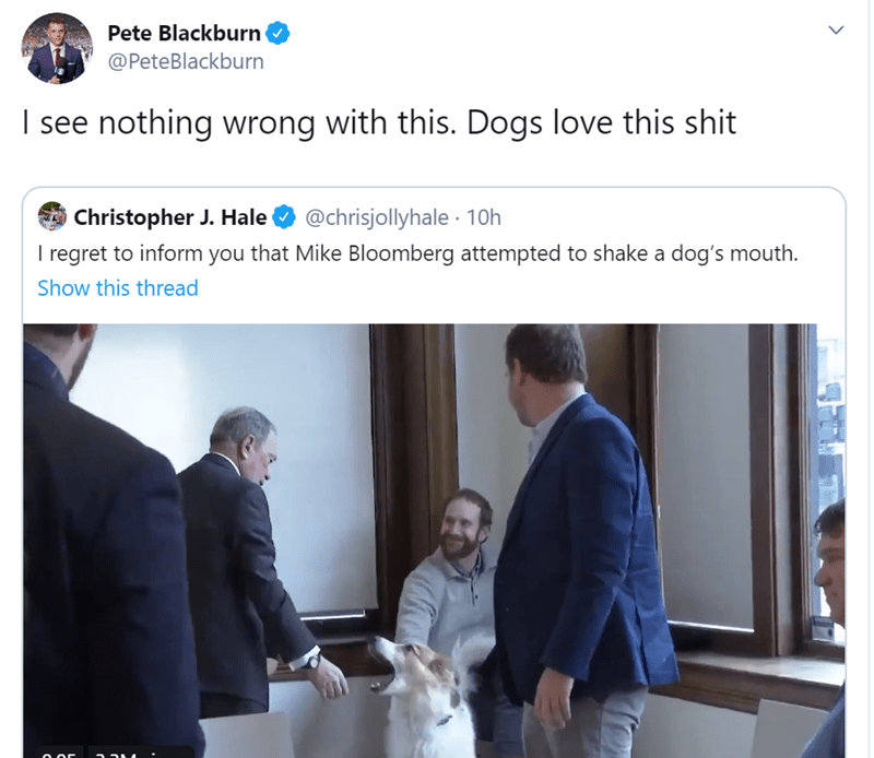 Text - Pete Blackburn @PeteBlackburn I see nothing wrong with this. Dogs love this shit Christopher J. Hale I regret to inform you that Mike Bloomberg attempted to shake a dog's mouth. @chrisjollyhale · 10h Show this thread