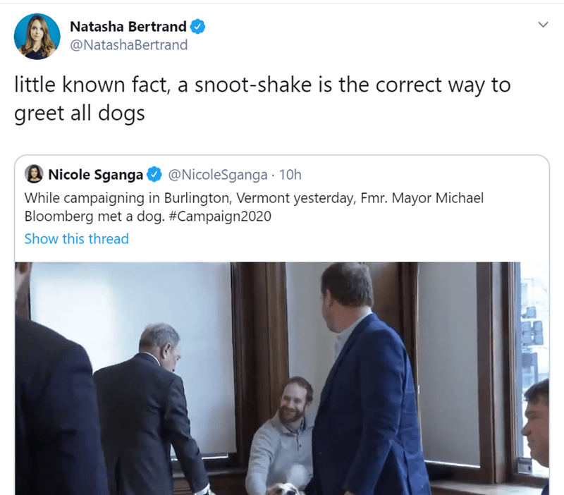 Text - Natasha Bertrand @NatashaBertrand little known fact, a snoot-shake is the correct way to greet all dogs Nicole Sganga @NicoleSganga · 10h While campaigning in Burlington, Vermont yesterday, Fmr. Mayor Michael Bloomberg met a dog. #Campaign2020 Show this thread