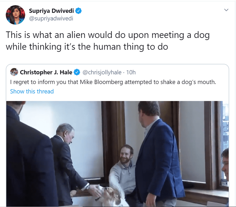 Text - Supriya Dwivedi @supriyadwivedi This is what an alien would do upon meeting a dog while thinking it's the human thing to do Christopher J. Hale I regret to inform you that Mike Bloomberg attempted to shake a dog's mouth. @chrisjollyhale · 10h Show this thread