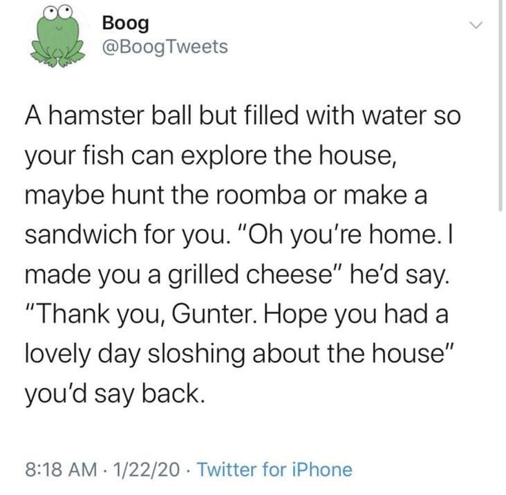 "tweet by boog a hamster ball but filled with water so your fish can explore the house maybe hunt the roomba or make a sandwich for you ""oh you're home i made you a grilled cheese"" he'd say. ""thank you gunter. hope you had a lovely day sloshing about the house"" you'd say back"