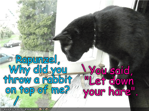 "Cat - Rapunzel, Why did you throw a rabbit""Let down on top of me? You said, your hare"". ICANHASGHEEZEURGER COM S"