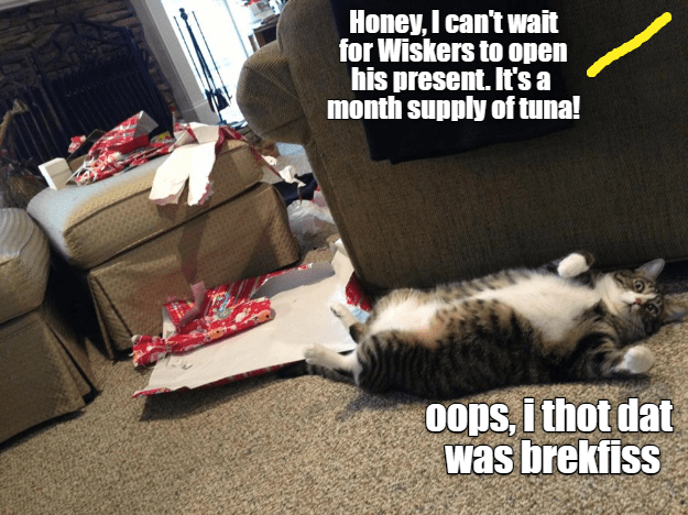 Cat - Honey, I can't wait for Wiskers to open his present. It's a month supply of tuna! oops, i thot dat was brekfiss