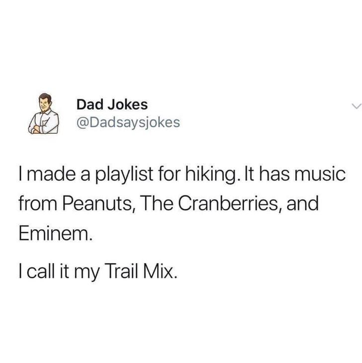 Text - Dad Jokes @Dadsaysjokes I made a playlist for hiking. It has music from Peanuts, The Cranberries, and Eminem. I all it my Trail Mix.