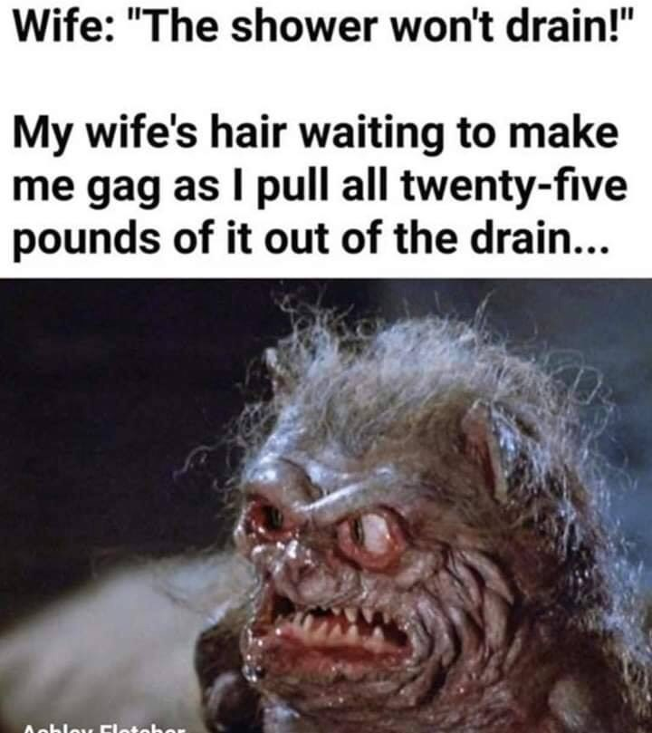 "Facial expression - Wife: ""The shower won't drain!"" My wife's hair waiting to make me gag as I pull all twenty-five pounds of it out of the drain... Aobley Eletehor"