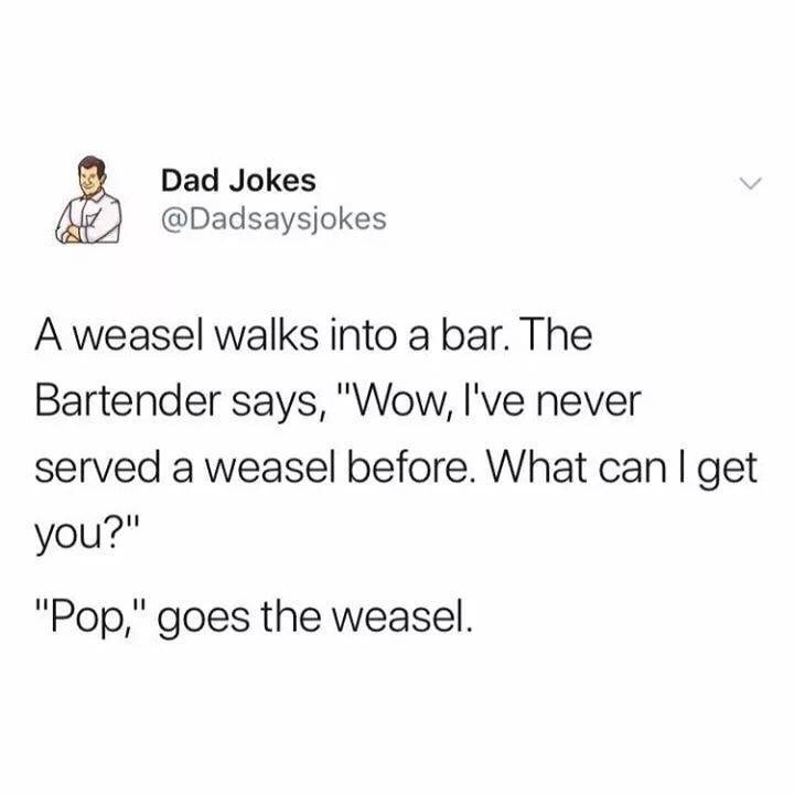 "Text - Dad Jokes @Dadsaysjokes A weasel walks into a bar. The Bartender says, ""Wow, I've never served a weasel before. What can I get you?"" ""Pop,"" goes the weasel."