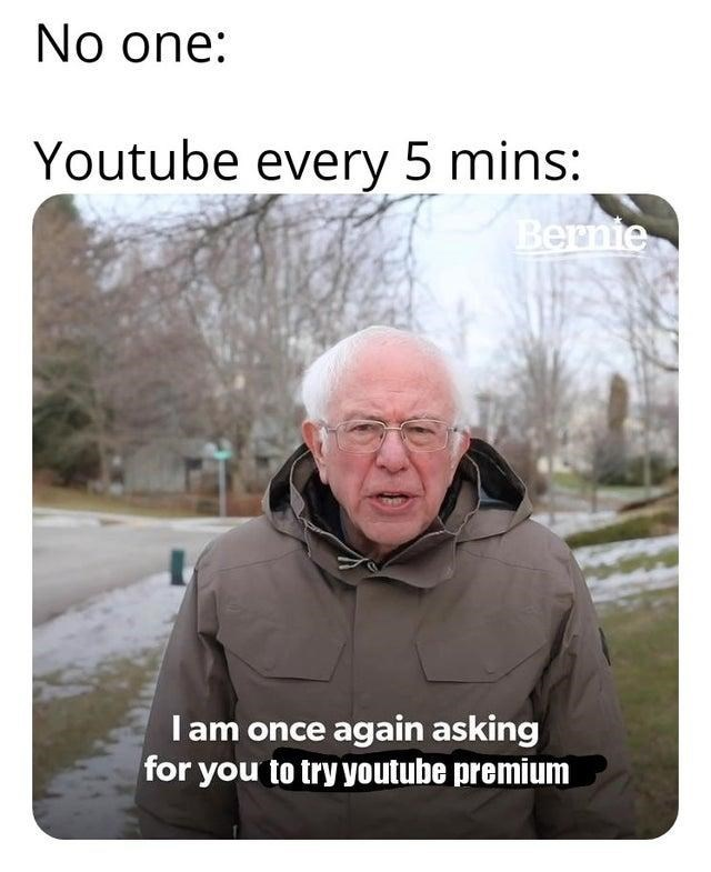 Photo caption - No one: Youtube every 5 mins: Bernie I am once again asking for you to try youtube premium