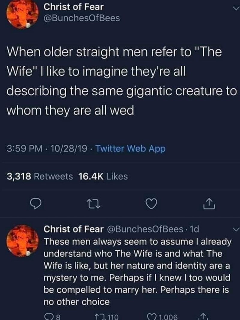 """Text - Christ of Fear @BunchesOfBees When older straight men refer to """"The Wife"""" 