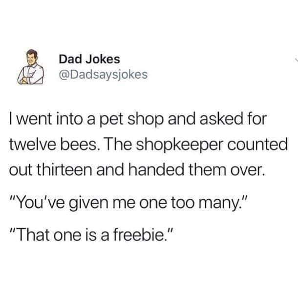 """Text - Dad Jokes @Dadsaysjokes I went into a pet shop and asked for twelve bees. The shopkeeper counted out thirteen and handed them over. """"You've given me one too many."""" """"That one is a freebie."""""""