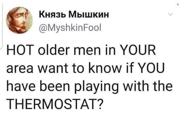 Text - Князь Мышкин @MyshkinFool HOT older men in YOUR area want to know if YOU have been playing with the THERMOSTAT?