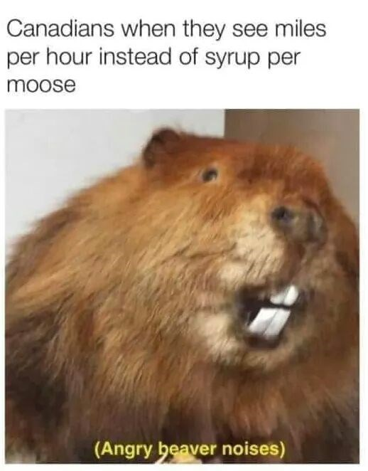 Adaptation - Canadians when they see miles per hour instead of syrup per moose (Angry beaver noises)