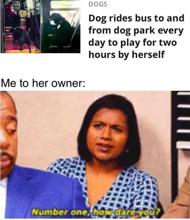 Funny meme about dog who takes the bus to play by themselves, image of kelly kapoor from office saying number one how dare you