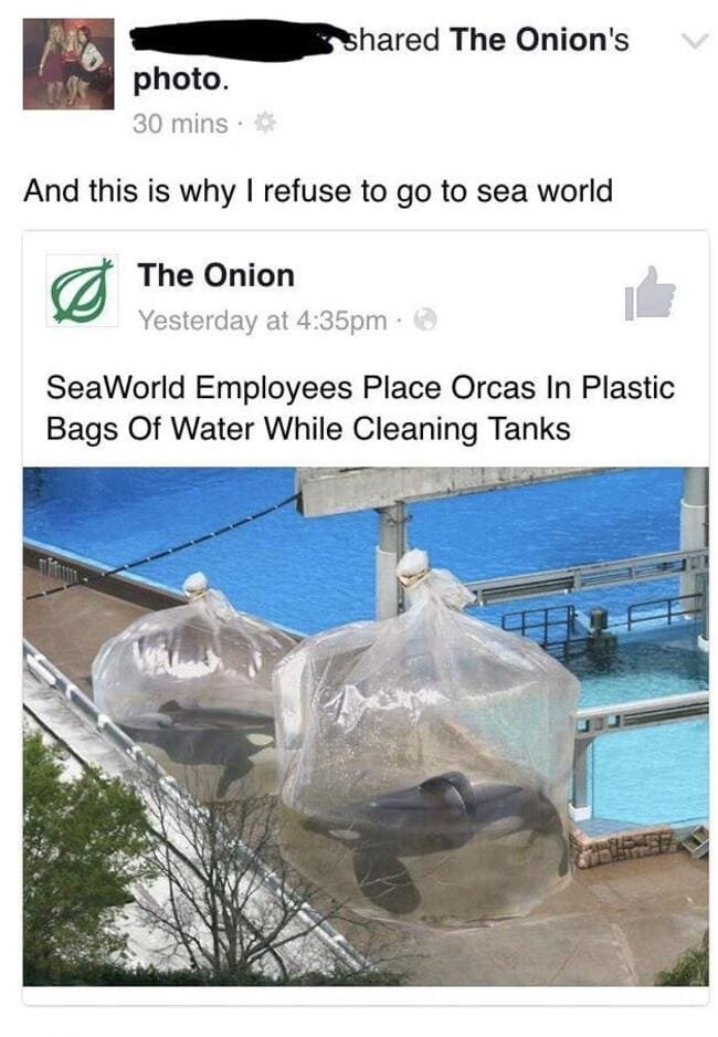 Water - shared The Onion's photo. 30 mins · And this is why I refuse to go to sea world The Onion Yesterday at 4:35pm · SeaWorld Employees Place Orcas In Plastic Bags Of Water While Cleaning Tanks