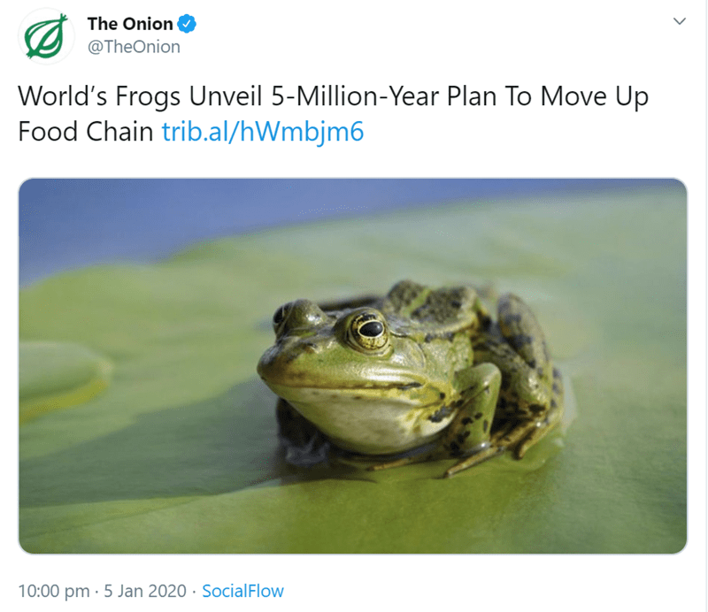 Toad - The Onion @TheOnion World's Frogs Unveil 5-Million-Year Plan To Move Up Food Chain trib.al/hWmbjm6 10:00 pm · 5 Jan 2020 · SocialFlow