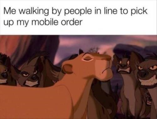 the lion king lioness walking past hyenas with her head held high: me walking by people in line to pick up my mobile order