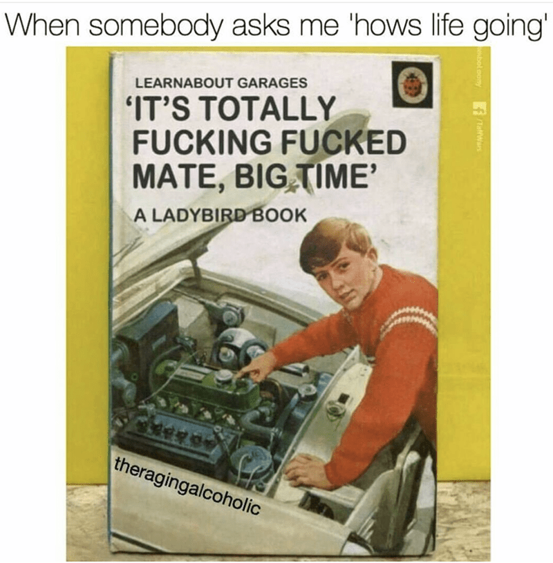 Text - When somebody asks me 'hows life going' LEARNABOUT GARAGES IT'S TOTALLY FUCKING FUCKED MATE, BIG TIME' A LADYBIRD BOOK theragingalcoholic fTatrwar