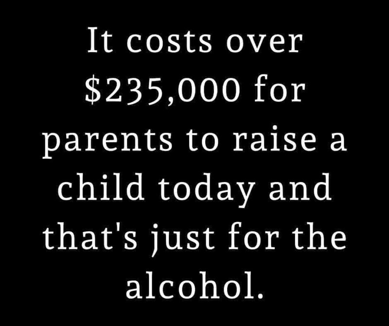 Text - It costs over $235,000 for parents to raise a child today and that's just for the alcohol.