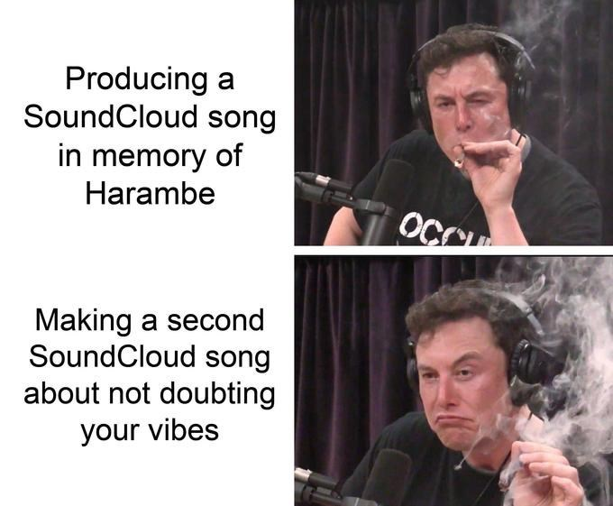 Text - Producing a SoundCloud song in memory of Harambe OCC Making a second SoundCloud song about not doubting your vibes
