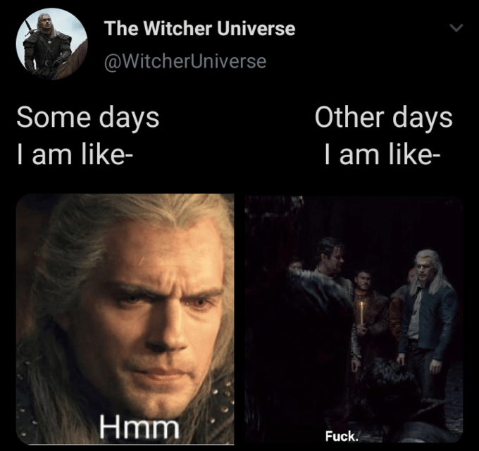 Text - The Witcher Universe @WitcherUniverse Some days I am like- Other days I am like- Hmm Fuck.