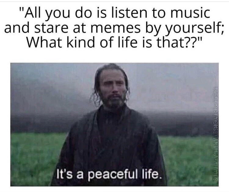 """Text - """"All you do is listen to music and stare at memes by yourself; What kind of life is that??"""" It's a peaceful life. 918EEDE ONSSTARIMGATMEMES"""