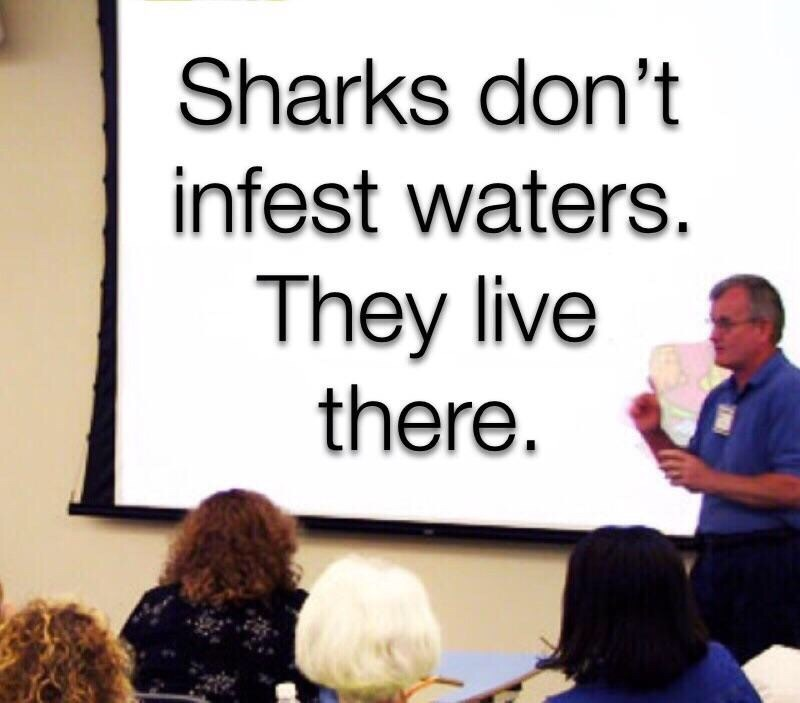Text - Sharks don't infest waters. They live there.